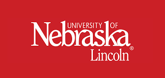UNL to offer code-based literacy instruction.  Click download to get the details
